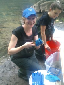 Alter in the Bronx River, collecting DNA from fishes including mummichog (she's holding an American eel).