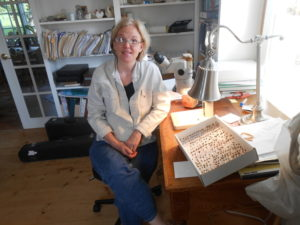 Applied Entomologist Sara Bushmann with a box of bees of the genus Andrena.